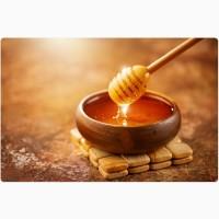 Купуємо мед сортовий та різнотрав#039;я без соняха