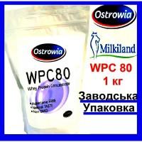 Протеїн WPC 80 Ostrowia | Сивороточний білок