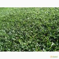 Продам семена газонной травы