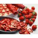 Ezidri Snackmaker FD500 - сушка для фруктов, овощей и др