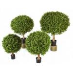 Искусственные растения и кашпо эксклюзивного качества (Бельгия)