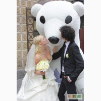 Белый медведь, аренда на праздник, на выставку