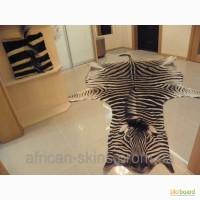 Продам Шкуру Зебры / Hartman s Zebra