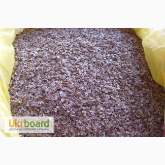 Продам семена укропа, Алигатор, Салют, доставка по всей Украине почтой