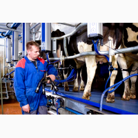 Послуги з поставки та монтажу високоякісного обладнання компанії ДеЛавль