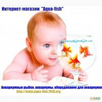 Интернет-магазин Aqua-Fish