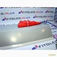 ФитоСветильники, LED освещение теплиц