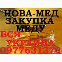 Закупка мёда оптом в ДНЕПРОПЕТРОВСКОЙ И ХАРЬКОВСКОЙ обл. Забираем своим транспортом