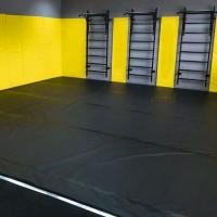 Борцовский ковер 5, 5м*5, 5м, ковры для единоборств