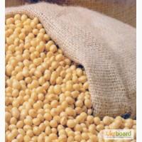 Соєві боби Зерно ГМО Оцінка 2