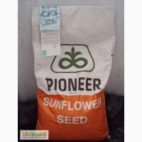 Посевной материал подсолнечника и кукурузы от компании Пионер (Pioneer)