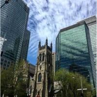 Вам поможет иммигрировать в Канаду, лучший канадский иммиграционный адвокат