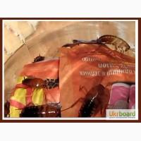 Продам туркменских тараканов (кормовые насекомые)