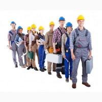 Бесплатное трудоустройство в Польше