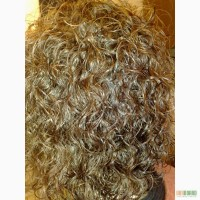 Биозавивка волос, биозавивка фото цена, Биозавивка мосса, Биозавивка Киев, Мастер на дом