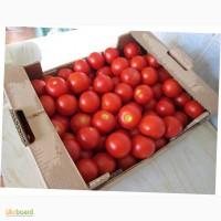 Ящики для помидоров