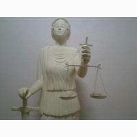 Адвокат.Спори по воспитанию детей