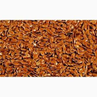 Продам лён, семя льна оптом от производителя