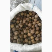 Продам орех грецкий серый снаружи.а также мелкий 28- Не дорого