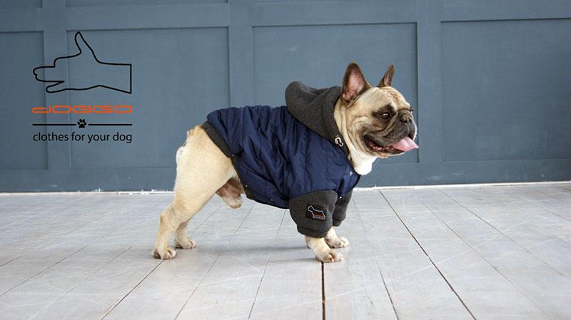 Фото 15. Одежда для собак – Куртка-бомбер. TM DOGGO Весна – 2018