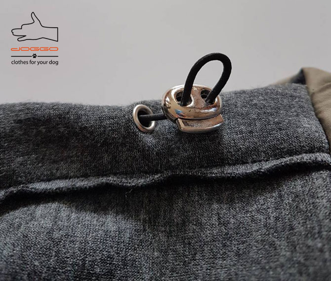 Фото 19. Одежда для собак – Куртка-бомбер. TM DOGGO Весна – 2018