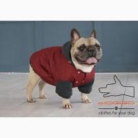Одежда для собак – Куртка-бомбер. TM DOGGO Весна – 2018