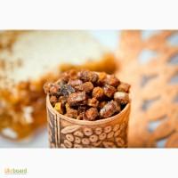 Перга пчелиная в сотах высокого качества, продажа и доставка по всей Украине