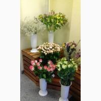Продається квітково-сувенірний бізнес