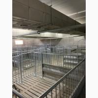 Будівництво і реконструкція свиноферм ПІД КЛЮЧ
