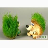Травянчики - живые экосувениры