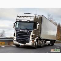 Ремонт грузовиков Скания Scania Киев, компьютерная диагностика Скания Scania Киев