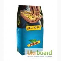 Реализуем посевной материал кукурузы(семена)