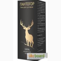 Купить Пантогор - гель для суставов оптом от 50 шт