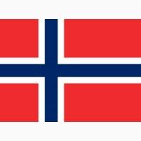 Преподаю норвежский язык