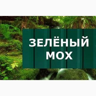 Профнастил зелённый мох, купить зелённый профнастил ПС-15, RAL 6005
