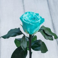 Отличный подарок к 8 марта Невянущие розы в колбе Lerosh – Mini 27 см, Бирюзовая