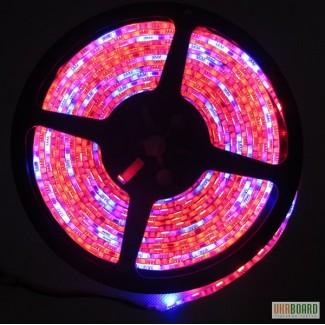 Светодиодная лента для подсветки растений 72W 5 метров. Освещение помещений, баров, кафе