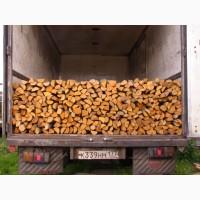 Продам дрова кругляк кубанами твердих порід