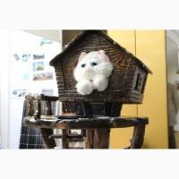 Купить домики для кошек по самым привлекательным ценам