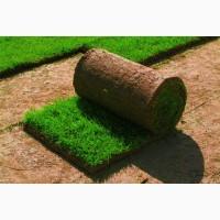 Комплексные услуги по озеленению территории