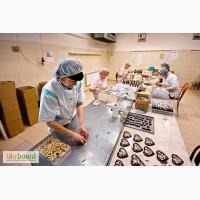 Рабочие на упаковку конфет, Польша