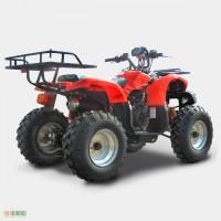 Квадроцикл SP150-2