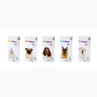 Бравекто жевательная таблетка от блох и клещей для собак Bravecto