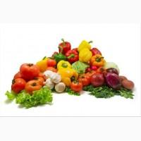 Продуктовая продовольственная база, оптовые склады, Доставка