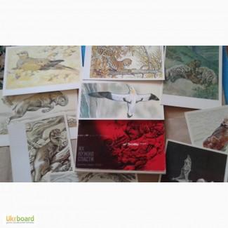 Красная книга-открытки
