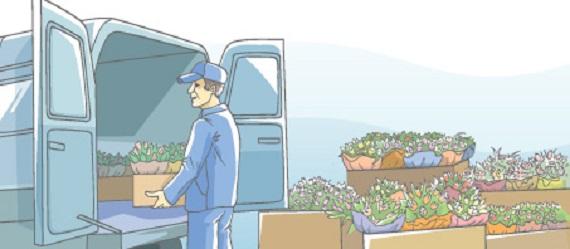 Где оптовые продажи живых цветов дель