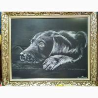 Картина автораДруг-пастель, 50х40