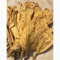 Продаю качественный тютюн на развес разной крепости-Берли Вирджиния Махорка