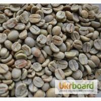 Кофе Арабика Бразилия Сантос, натуральный, зеленый (необжаренный) в зернах