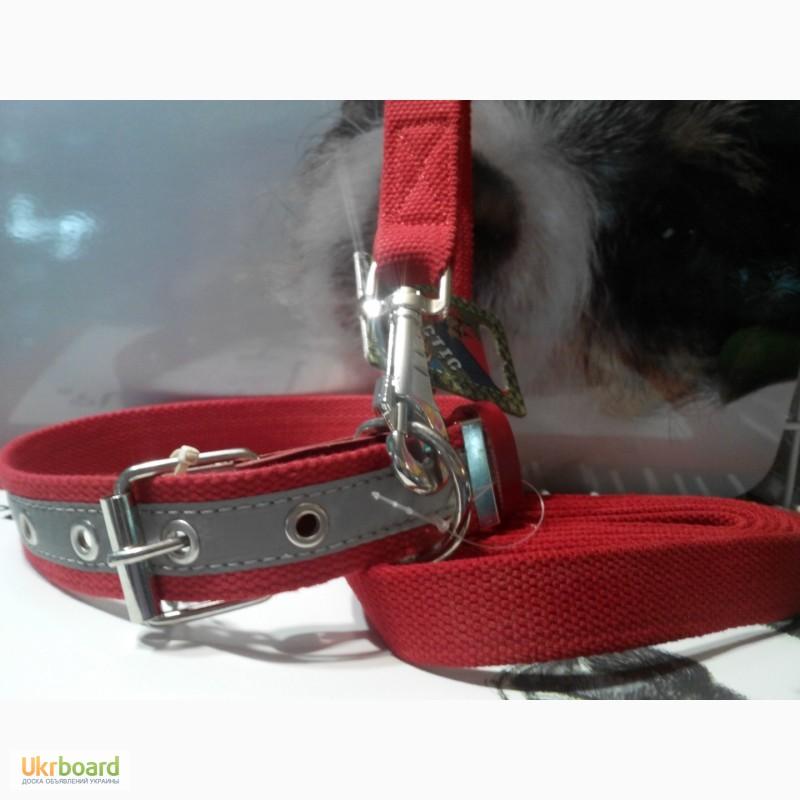 Корм Royal Canin | Роял Канин для щенков и собак купить в